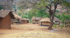 {MISCONCEPTIONS: ALL AFRICANS LIVE IN HUTS AND TREES} #huts #trees