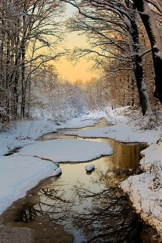 Winter Wonderland in The Netherlands