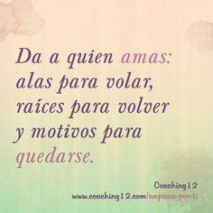.Amor