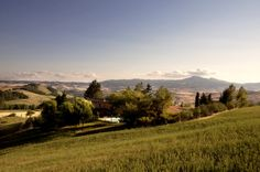 Podere Assolatina Agriturismo B - A great landscape of Tuscany, Siena, Val D'Orcia - World Heritage