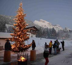 Feiner Weihnachtsmarkt auf dem Winterstellgut Throughout The World, Around The Worlds, Austria, Winter, Cozy, Nature, Christmas, Travel, Outdoor
