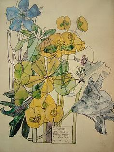 Charles Rennie Mackintosh botanical drawings