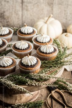 Pumpkin Ginger Cupcakes with Chocolate Icing & braised hood Beautiful Cupcakes, Baking Cupcakes, Yummy Cupcakes, Cupcake Recipes, Cupcake Cookies, Dessert Recipes, Yummy Recipes, Fall Recipes, Pumpkin Cupcakes
