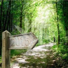 Natural Way est une carte de voeux nature pour souhaiter la bonne année 2015. Une invitation écologique pour des balades oxygénées en 2015.  Carte de voeux nature 2015 avec chemin forestier et panneau indicateur en bois gravé au millésime de l'année 2015.  http://www.belles-cartes-de-voeux.eu/cartes-voeux-2015/produit/carte-de-voeux-nature-way/  Le filigrane de protection ne sera pas intégré à votre achat. ©apparence - revente interdite
