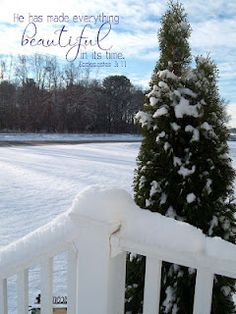 God's Beautiful Creation:  SNOW