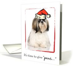 Dogs card: Shih Tzu Dog Christmas Greeting Card by Sandra Rose Designs