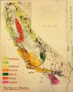 """Grizzly Bear """"subspecies"""" map in California, early 20th century."""