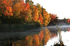 You'll find plenty of breathtaking scenes when you come to Rhinelander in the fall.