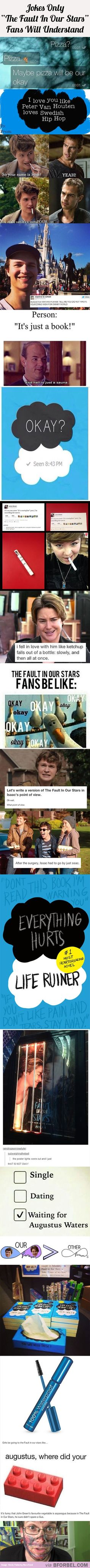 "19 Jokes Only ""The Fault In Our Stars"" Fans Will Understand… you also must watch or read the book once u do u will understand. See I may have watched and read the book and movie a little over 5 times. This pin is too funny 😂 Fandoms Unite, Love Book, This Book, Jhon Green, Good Books, My Books, John Green Books, Augustus Waters, Looking For Alaska"
