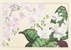 Tanigami Konan Japanese Woodblock Print