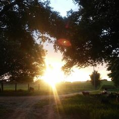 Natureza, nascer do sol