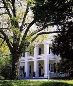 Southern Plantation Homes, Southern Mansions, Southern Plantations, Southern Homes, Southern Comfort, Southern Belle, Southern Living, Southern Charm, Simply Southern