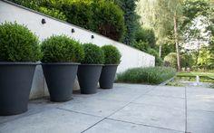 Moderne villa tuin modern villa garden on pinterest tuin urban gardening and wood storage - Moderne tuin ingang ...