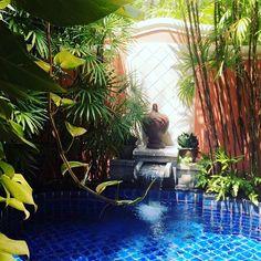 Love beeing in Jungle @santiburisamui #lovethailand #vacation #travel #junglefever #kohsamui #travel #aroundtheworld #followme #travelgram #travelblogger #fashionblog #fashion #fashcation #love #potd #inspiration #beautiful #like #happy #rainforest #asia #germanblogger