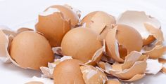 How to Use Egg Shells to Heal your Cavities - Healthy Life Vision Health Benefits Of Eggs, Calcium Rich Foods, Eating Eggs, Organic Fertilizer, Egg Shells, Cavities, My Coffee, Health Remedies, Natural Health