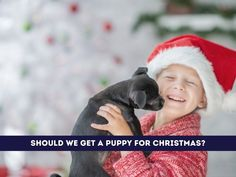 A Puppy for Christmas? Here's a Supply Checklist, Plus a Few Things to Consider - grkids.com Animal Experiences, Puppy Supplies, Golden Puppy, Foster Family, Sensory Issues, Getting A Puppy, Dog Id Tags, Christmas Mom, Animal Shelter