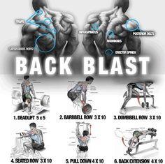 Big Back Blast Training ! Healthy Fitness Workout Plan