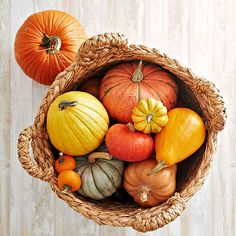 There's no better way to capture the essence of autumn than with a simple basket filled with cute miniature pumpkins and gourds. Find more outdoor decorating tips here: http://www.bhg.com/halloween/outdoor-decorations/outdoor-halloween-decorating-with-pumpkins/?socsrc=bhgpin090414harvestpumpkinbasket&page=3