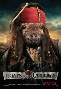 """""""Goats Of The Caribbean: On Stranger Farms""""  #ReplaceAMovieTitleWithGoat"""""""