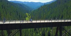 These six American bike paths can offer you the ride you're looking for, whether you want to see grand vistas, interesting wildlife, or local culture and history. Bike Trails, Biking, Saturday Evening Post, Bike Path, Bike Rider, Trail Riding, Cool Bikes, Idaho, Paths