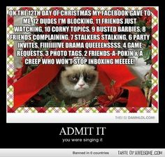 12 days of Christmas (Facebook style)