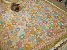 Applique 'n Patch Quilting: OPAM and Hexagon update