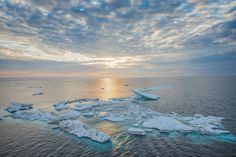 Surface temperatures are heading toward levels that many scientists believe will pose a threat to both the natural world and to human civilization.
