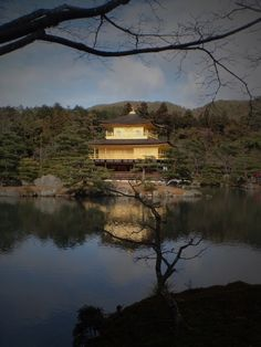 golden pavilion, reflection, Kyoto, japan, Japanese architecture