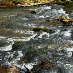 Cane Creek Blairsville Ga