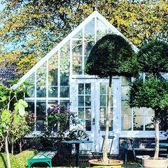 One of my favorite greenhouses  Dagens blogg, adress #sofiero #sofieroslott #växthus #greenhouse @sofieroslott