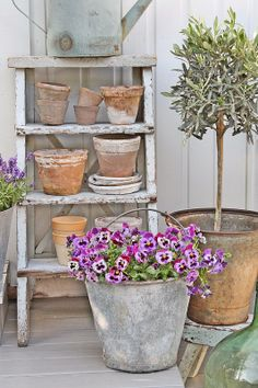 Old step ladder and clay pots