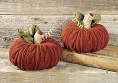 My favorite source for arts and crafts:  Cabled Pumpkin Duo