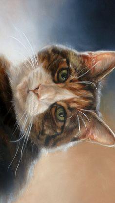 Dierenkunst | Dierportretten | Dierenportretten in opdracht | Kattenkunst | Wildlife Art | Portretten en dieren schilderijen in olieverf, pastel, aquarel, grafiet, potlood, houtskool door Marjolein Kruijt | portret hond