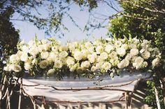 #roses #canopy #Chuppah #Birch Tree. Floral Design by blossomfloral.net/ Photography by heidiryder.com Coordination by wishwonderdream.com/  Read more - http://www.stylemepretty.com/2011/08/09/los-angeles-wedding-by-heidi-ryder/