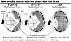 Mobile Phone Radiation  I'm sharing this not to promote the product shown at the end (though I think it's a good one), but to alert people to just how dangerous cell phones can be to your health!