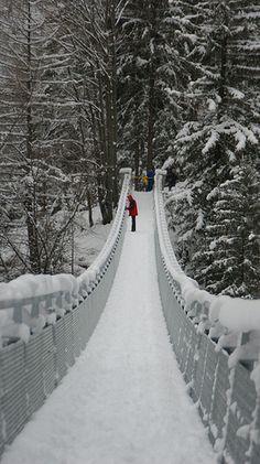 I love WInter snow scenes Winter Szenen, I Love Winter, Winter Magic, Winter Christmas, Winter Walk, Prim Christmas, Foto Poster, Snowy Day, All Nature
