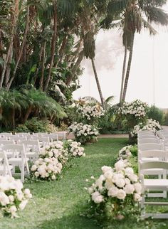 Today's Santa Barbara wedding at The Biltmore has an elegant, relaxed feel, but with the most incredible attention to detail thanks to Bluebird Productions. Beach Wedding Reception, Wedding Ceremony Decorations, Ceremony Backdrop, Tree Wedding, Outdoor Ceremony, Wedding Ideas, Wedding Ceremonies, Wedding Trends, Wedding Aisles