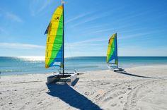 Hobie Cat Catamarans behind the Sandpiper Beacon Beach Resort in Panama City Beach, Florida!