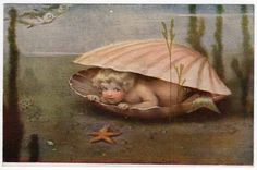 Gutmann Postcard Baby Mermaid Peaking Out of Clam Shell