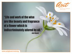 Life and work of the wise are like beauty and fragrance of a flower which is indiscriminately adored by all. - Asit Ghosh ‪#‎Quotes‬ ‪#‎Asit‬#Ghosh#FFT#ThoughtDrops