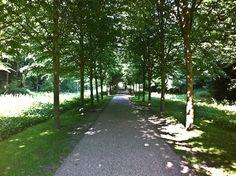 Denmark summer time...