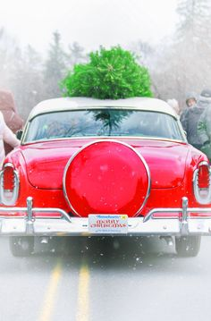 Red Car with Christmas Tree on Top