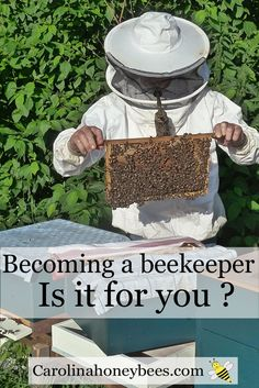 Is becoming a beekeeper in your future? Raising bees is a fascinating hobby. The popularity of bees has led to an explosion of new beekeepers. Perhaps you are ready to become a backyard beekeeper and beyond. Lets get started. How To Start Beekeeping, Beekeeping For Beginners, Beekeeping Equipment, Beekeeping Supplies, Raising Bees, Backyard Beekeeping, Hobby Farms, Save The Bees, Bees Knees