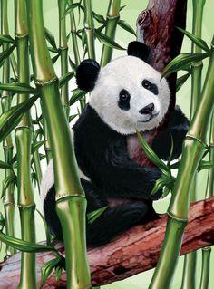 #PANDA digital painting