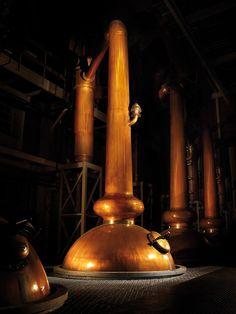 The stills at Glenmorangie Distillery