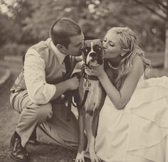 wedding-dog-ringbearer