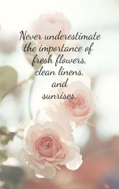 Fresh flowers, clean linen and sunrises! Flower Quotes Love, Love Quotes, Inspirational Quotes, Happy Quotes, Flower Sayings, Simple Quotes, Super Quotes, Raindrops And Roses, Simple Pleasures