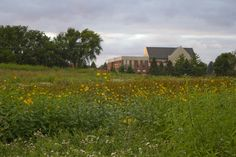 View of the Campus Center from the Dordt College Prairie