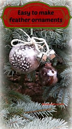 DIY feather ornaments using glass ornaments and dyed feathers. These feather ornaments only take a few minutes to make and can be made with craft feathers or your own chicken feathers. Simple Christmas, All Things Christmas, Christmas Crafts, Christmas Bulbs, Christmas Ideas, Crafts To Do, Diy Craft Projects, Diy Crafts, Craft Ideas