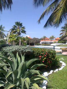 Hotel Maremares, Pto. La Cruz